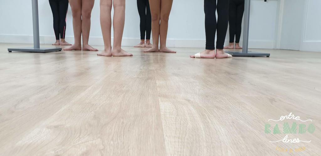 Tècnica de dansa per nenes, nens, adolescents, junior i adults a Sant Andreu de la Barca